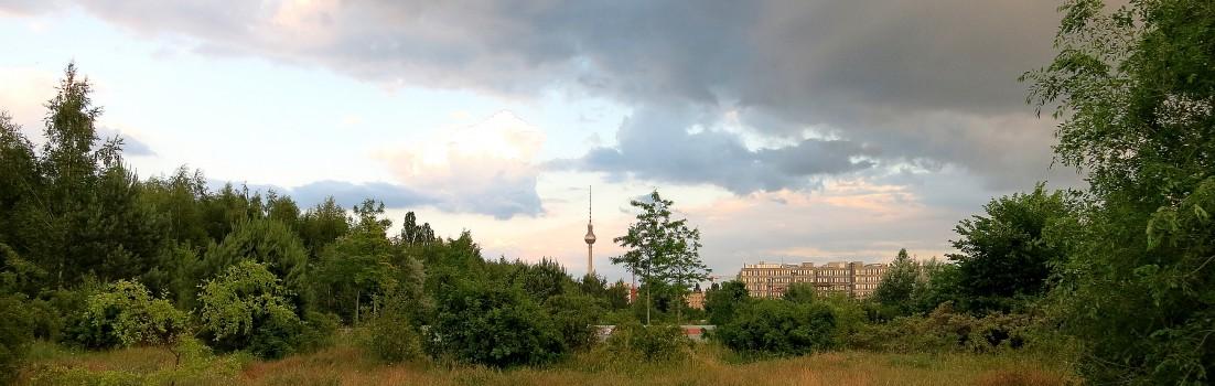 Berlin 10115 - Park am Nordbahnhof - Fernsehturm